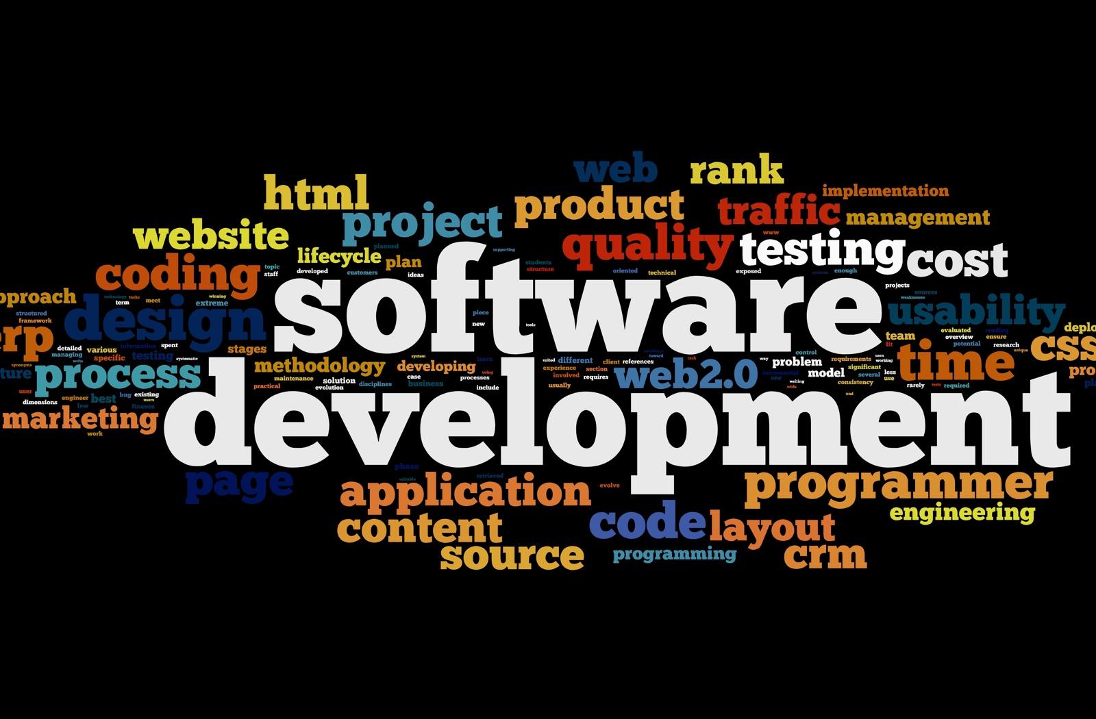 Business Software Development Services